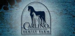 carlino1